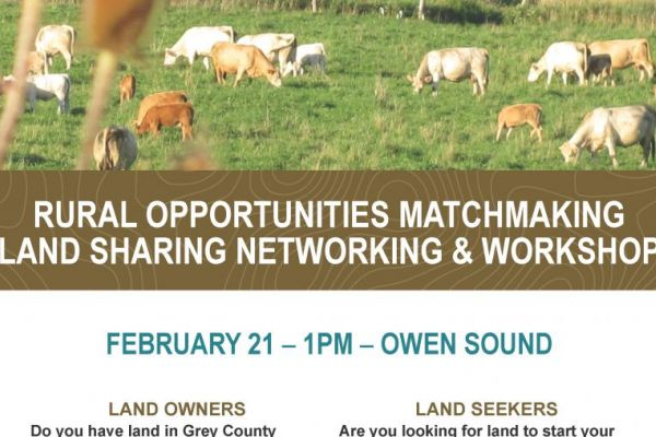 Rural matchmaking workshop poster
